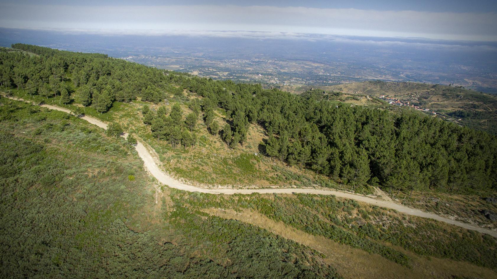 Sanctuaire Végétal de Linhares