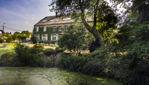 Jardin-forêt et maison