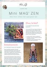MIni Mag zen.jpg