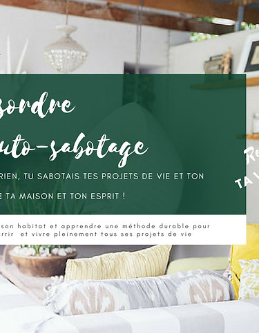 "Ebook ""Le désordre et l'auto-sabotage: reprends ta vie en main !"""