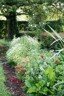 agenda-visite-jardin-(2)