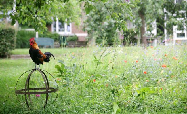 sous-les-tilleuls-jardin-3