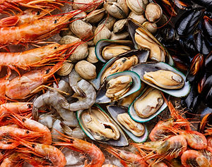 Khao Lak: Essen Meeresfrüchte in Khaolak.