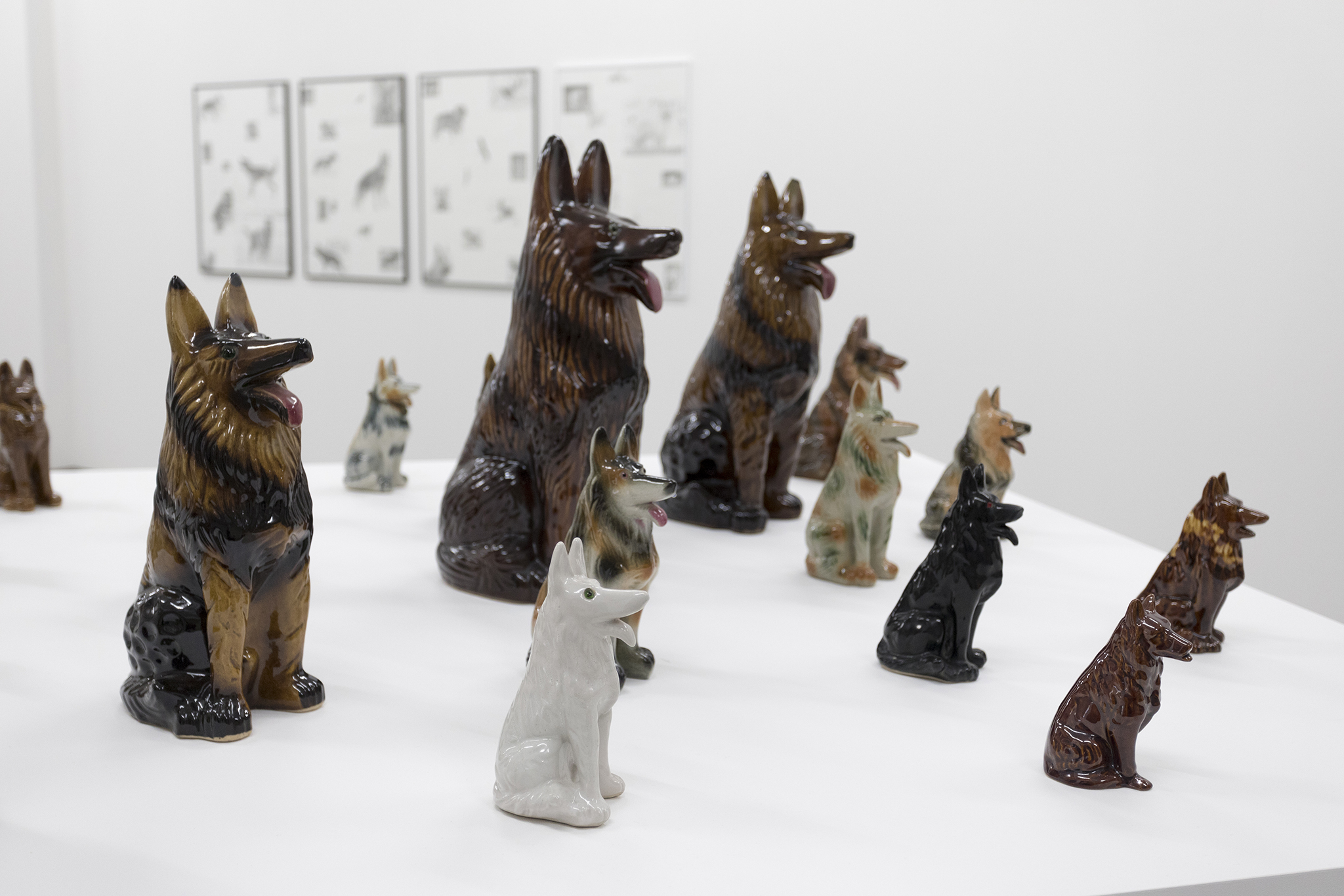 "Installation view at ""Schäferhund"""