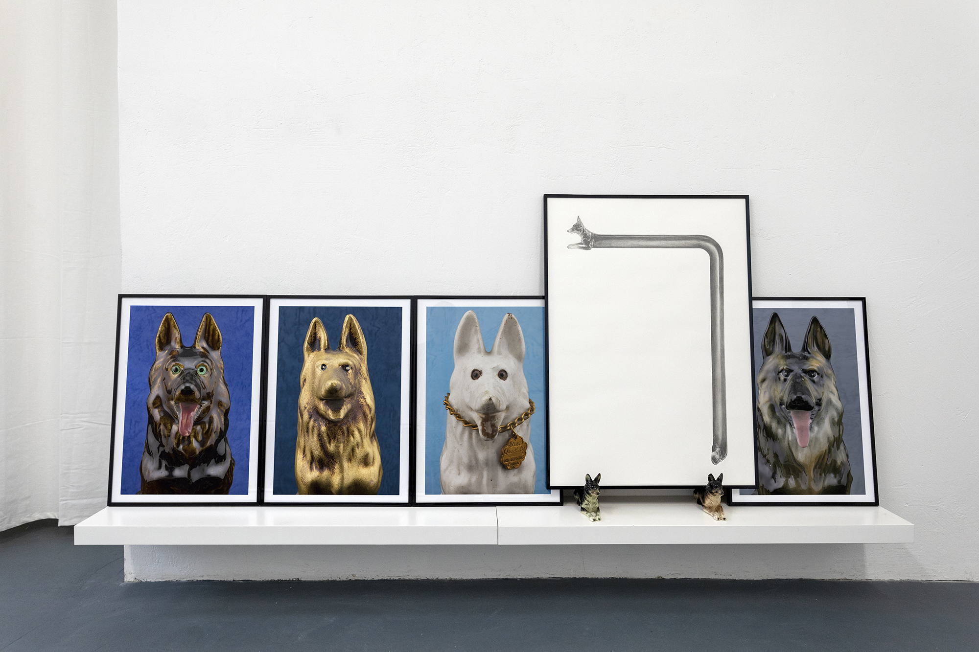 "Installation view at ""Grafrath:A Schäferhund Story"""
