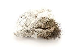 Mineral Catalog M #011