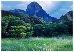 (Ver.5) Groundway Grassland