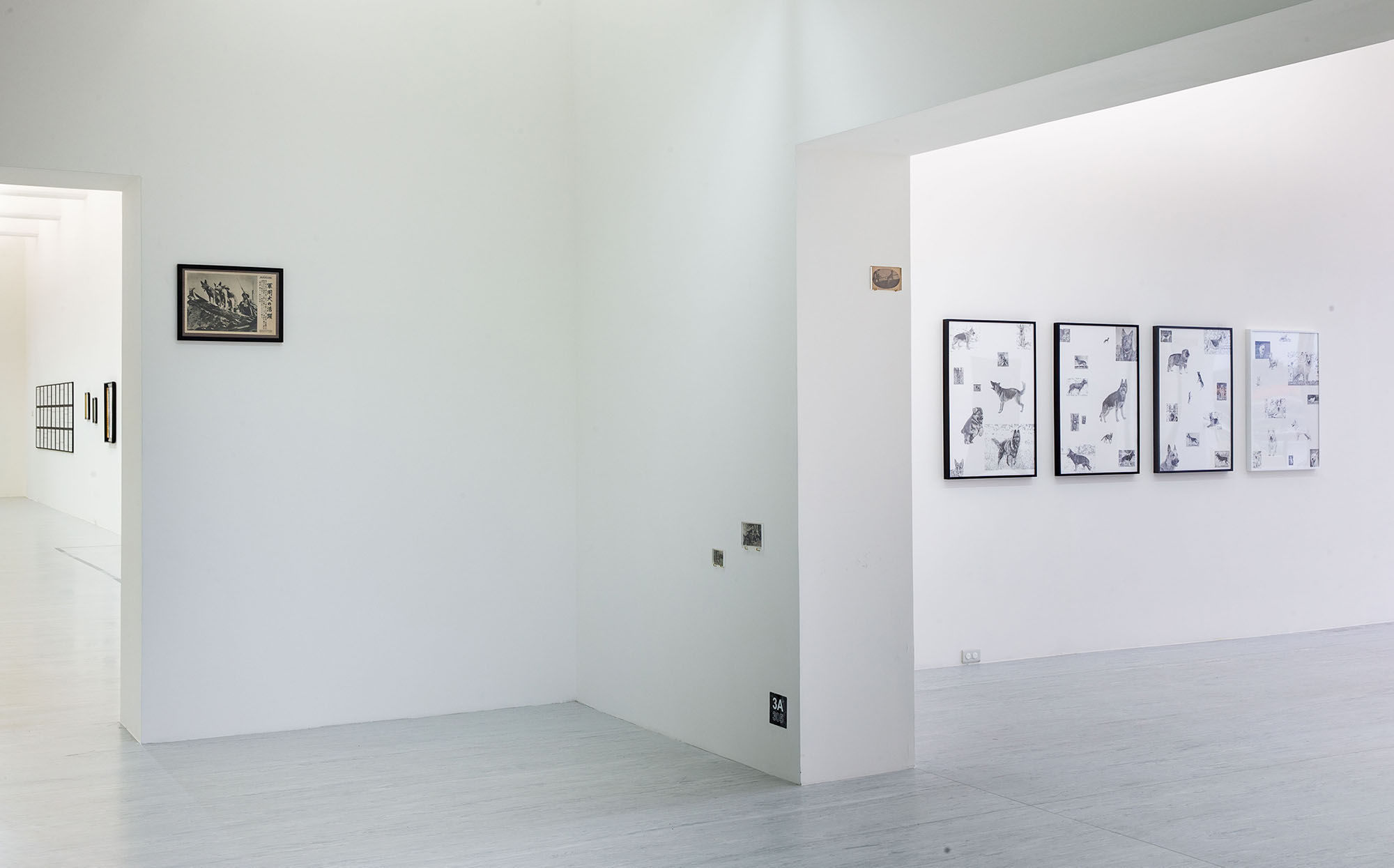 Installation view|TFAM