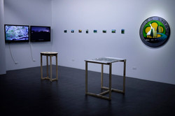 """Installation view at """"The Scene of Nature: East and West"""""""
