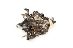 Mineral Catalog M #037