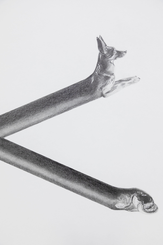 Formation Deformation Dogformation