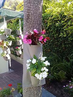 Fabric pot container gardening.jpg