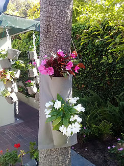 Fabric pot container gardening.jpg