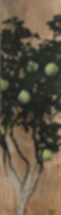 Fragmento de Membrillero