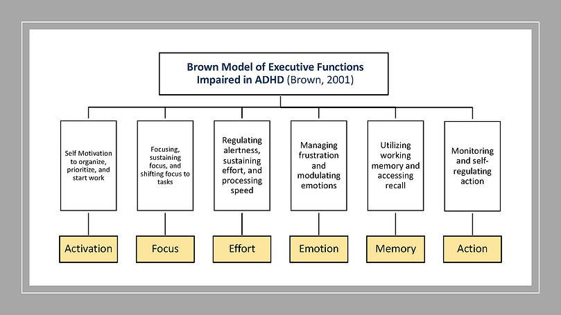 Brown Model graphic July 2021.jpg