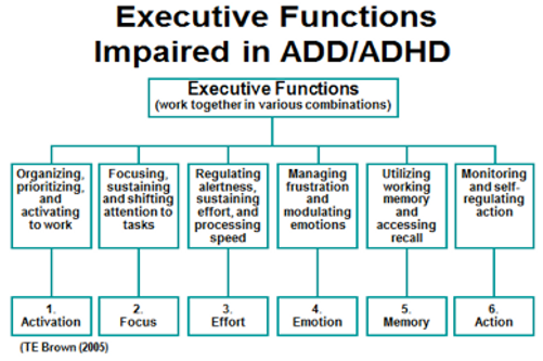 executive-functions-impaired-ADD-ADHD-1.