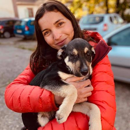 9 octobre 2021 : 24 chiens sauvés