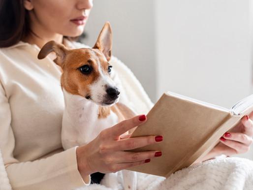Qu'est-ce qu'on lit ce soir ?