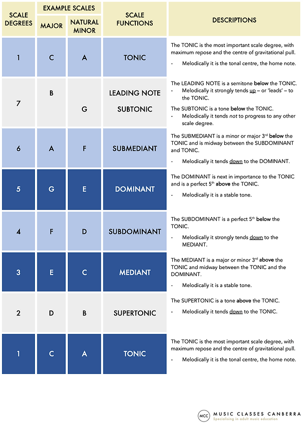 Scale degrees & functions 2 - website image.png