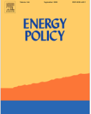 Heterogeneities in energy technological learning: Evidence from the U.S. electricity industry