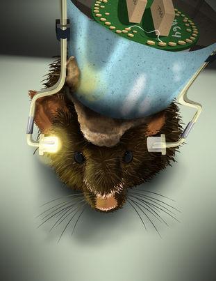 mouseilluatration_01.jpg