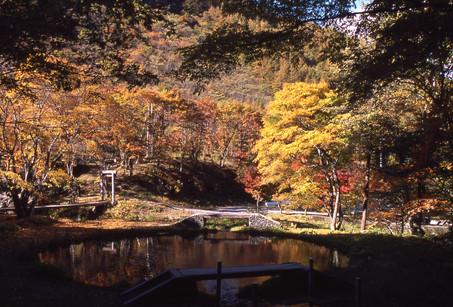 たまだれの滝4(H15年10月)