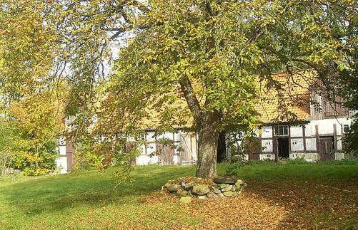 5570_Wirtschaftsgebäude_W-Ansicht_c.JPG