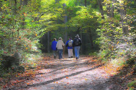 hiking-1232453_1920.jpg