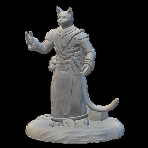 Catfollk Cleric