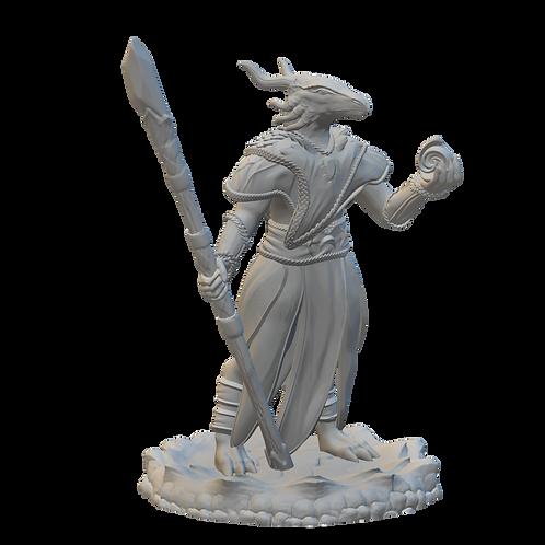 Dragonborn Sorceress