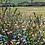 Thumbnail: P6 Spring Meadow