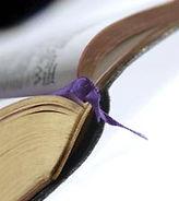 ספרים תמונה לאתר.jpg