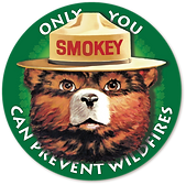 552-5527830_smokey-the-bear-png.png