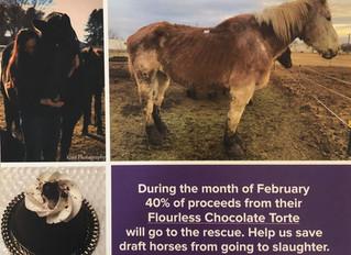 February 2019 Fundraiser