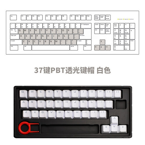 37 Keys White or Blue PBT Transparent Keycaps