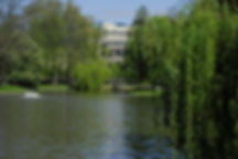 Parc Léopold, Lac