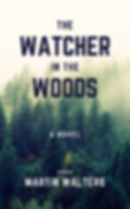 The Watcher in the Woods (novel).jpg
