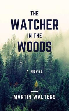 The Watcher in the Woods (novel).jpg