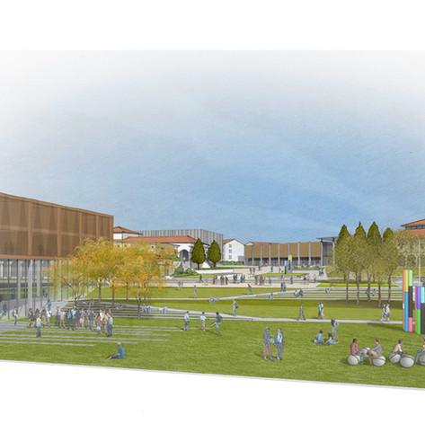 Massey University - CCM