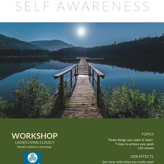 Week 8: Self Awareness