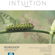 Week 6: Intuition Part 1