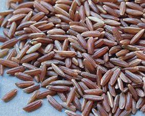 Riz long complet rouge IGP 500g - Canavere