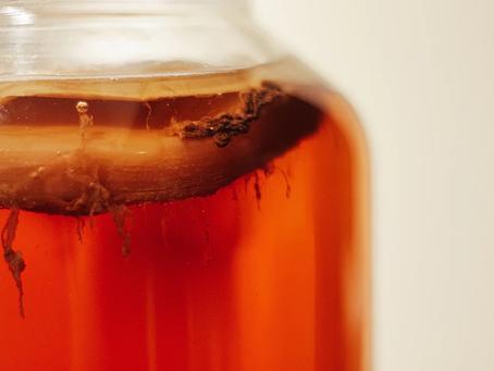 Qu'est-ce que le biofilm (levure de kahm) dans vos bocaux de fermentation?