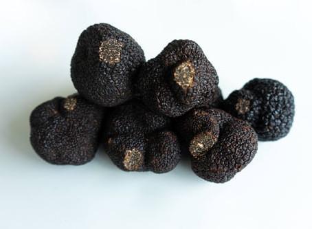 Les différentes variétés de truffes