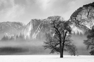 YosemiteWinter-100-2.jpg