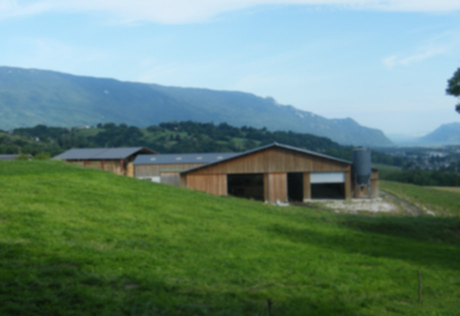 stabulation libre pour vaches laitières à St Cassin (73) - photo Laurent Pineau