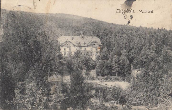 """Zagospodarowanie skarpy parkowej przy dawnym pensjonacie Waldesruh w parku krajobrazowym """"Góry Opawskie"""" w Głuchołazach """