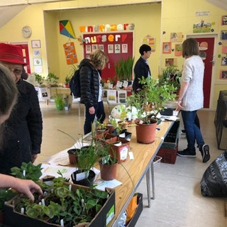Annual plant stall 2.jpg