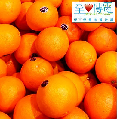 橙.jpeg