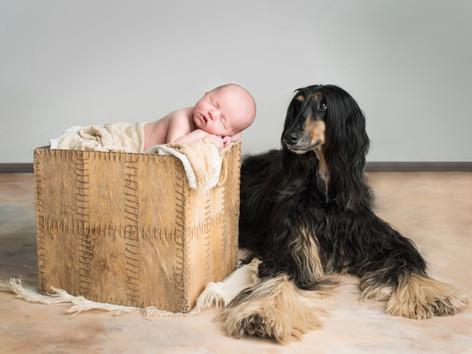 👼🏻 Jak se připravit na newborn focení